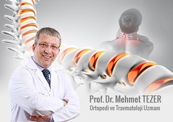 Prof.Dr.Mehmet Tezer